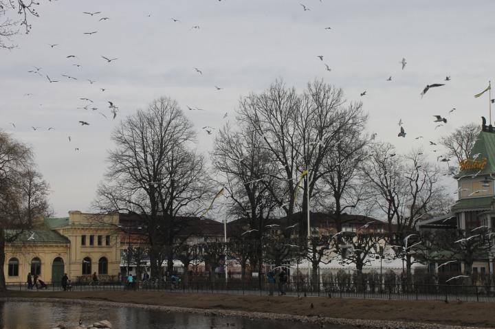 Day trip to Uppsala