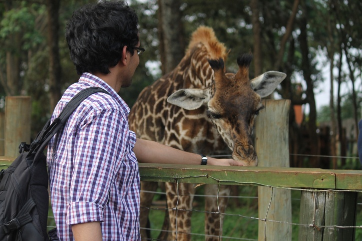 Giraffe.. Yayy!