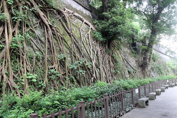 Ming Dynasty Wall, Guangzhou